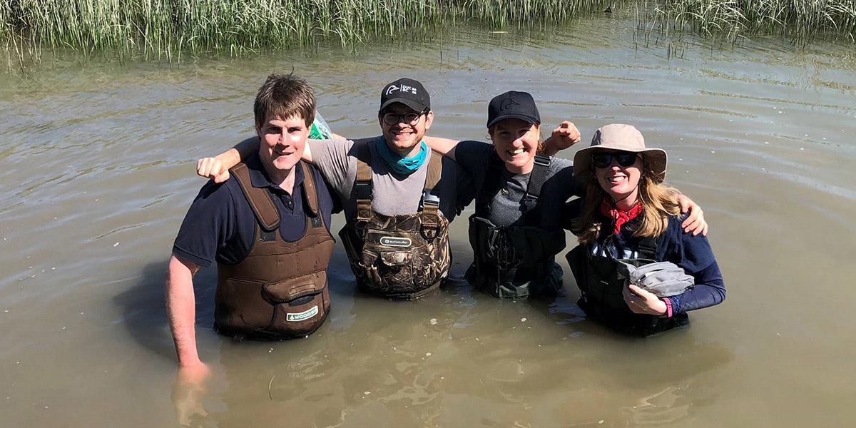 Colleagues in waist deep water