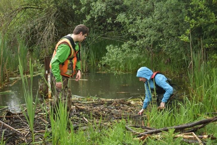 Two individuals wearing waterproof gear, standing in a swamp