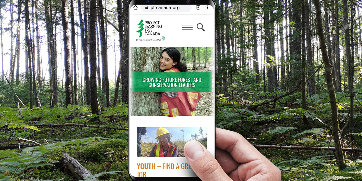a hand holds up a phone in front of a forest. On the phone is the new PLT Canada website