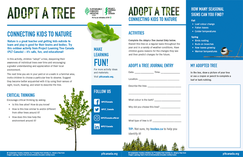 screen shot of adopt a tree education worksheet