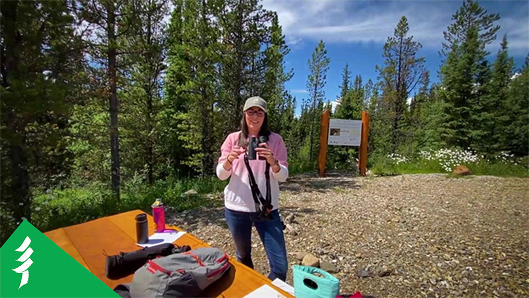 Laura holds a pair of binoculars, next to an outdoor table covered in her supplies
