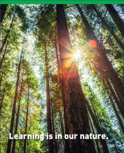 Forest Literacy Framework - photo 2