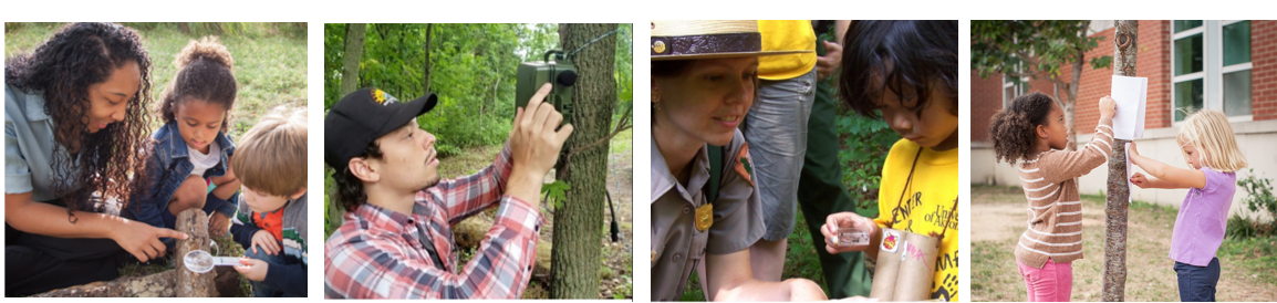 Four photos of children and adults learning in nature
