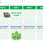 Mentorship program timeline