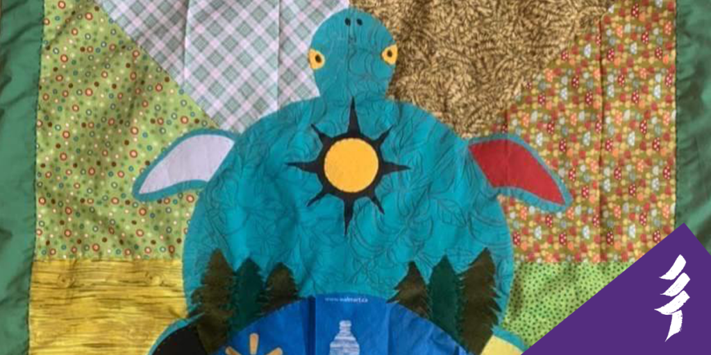 A blanket with a turtle design
