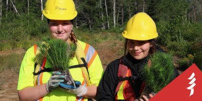 Two youth in hard hats holding baby trees.