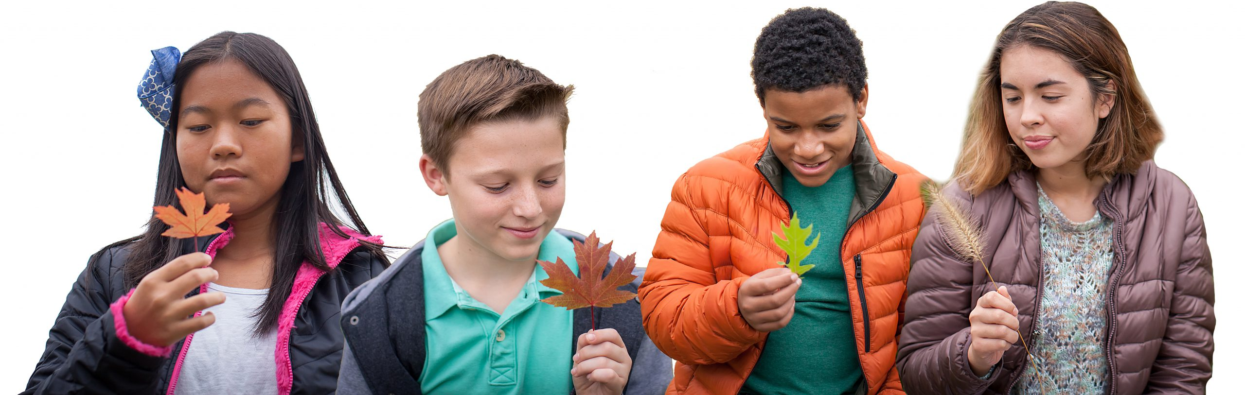 Four kids looking at leaves
